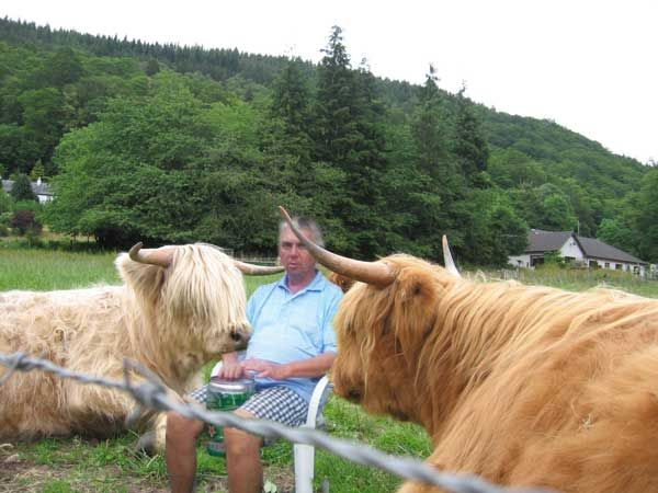 my friend George hanging out with some highland cows