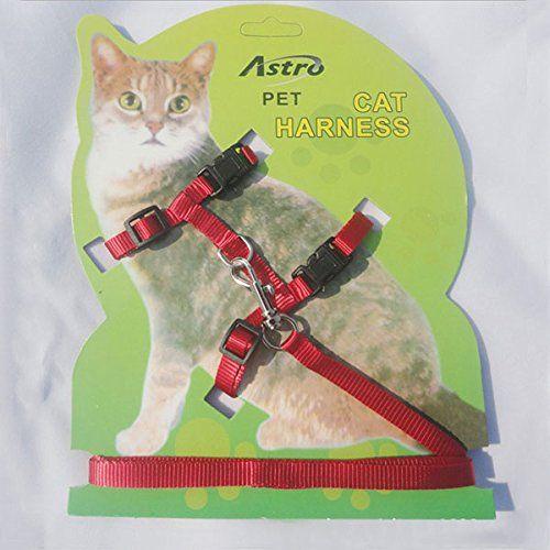 LSD Cat Lead Leash Harness Kitten Belt Nylon Strap Safety Rope Pet Band Adjustable Cat Dog Collar- Christmas Gift LSD http://www.amazon.ca/dp/B00PGRDJ14/ref=cm_sw_r_pi_dp_zCR2ub1XK4333