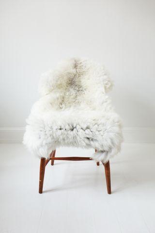 Whitey Lammeskind - Large