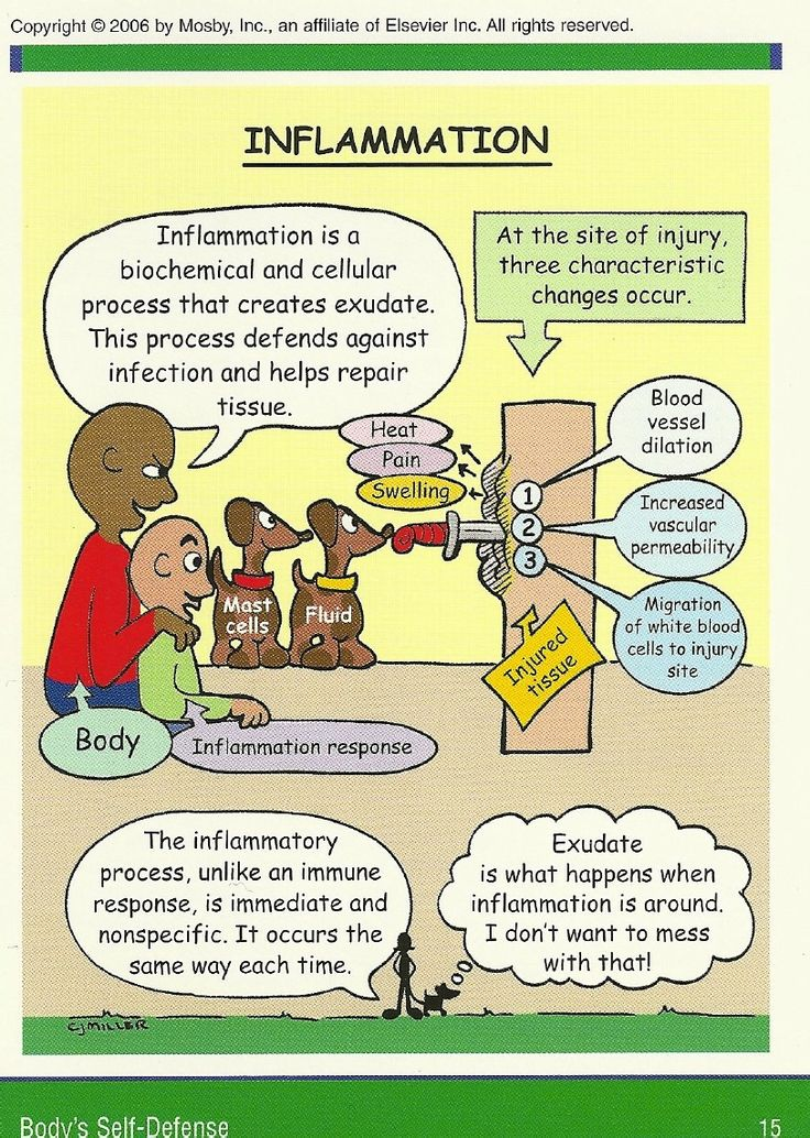 Mosby's Pathophysiology Memory NoteCards | Scribd