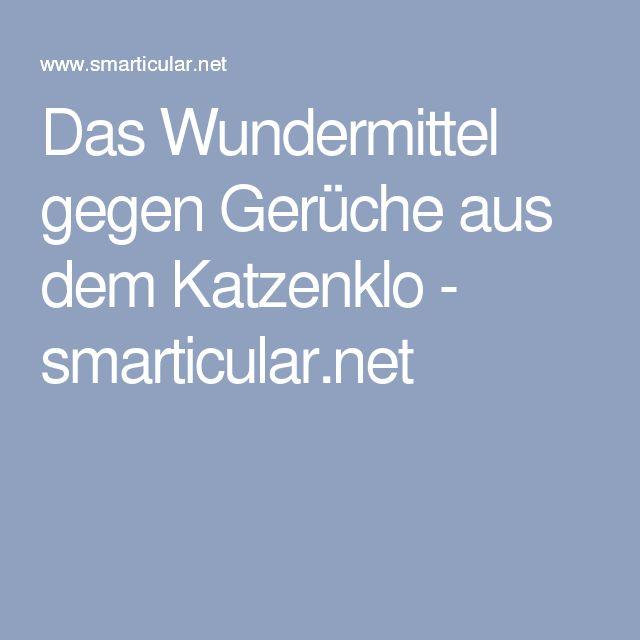 Das Wundermittel gegen Gerüche aus dem Katzenklo - smarticular.net