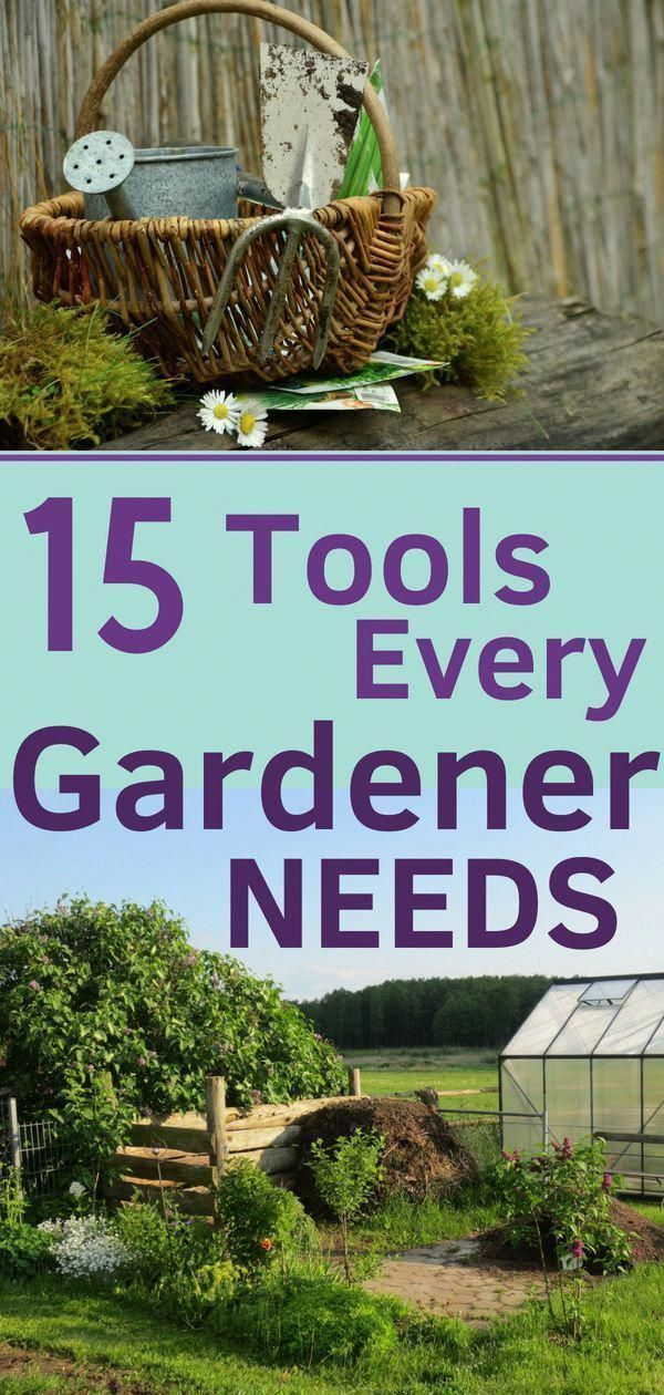15 Tools Every Gardener Needs Gardening Can Be Much Easier When Working With The Right Garden Tool Gardening For Beginners Organic Gardening Tips Garden Tools