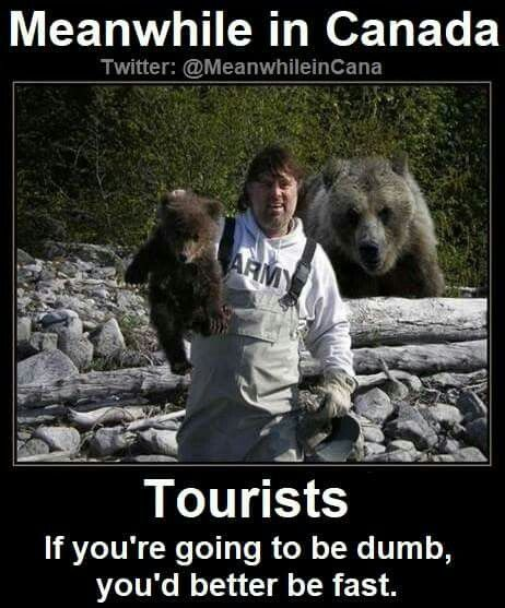 Meanwhile in Canada ... tourists!