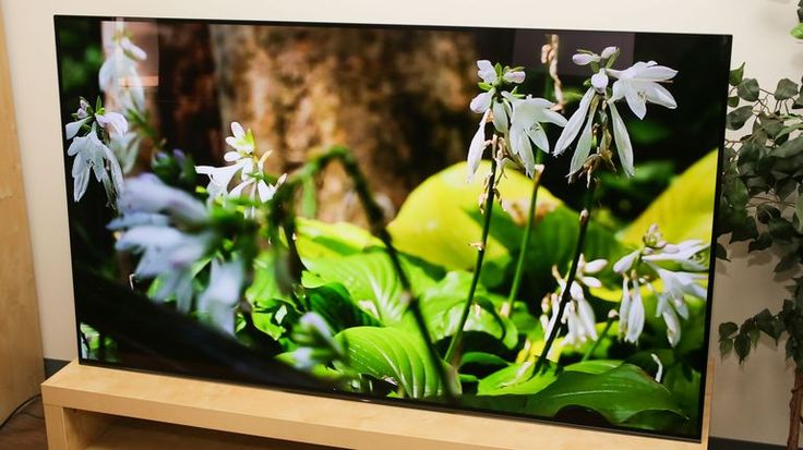 Sony XBR-A1E OLED TV review: Is it really better than LG? - CNET