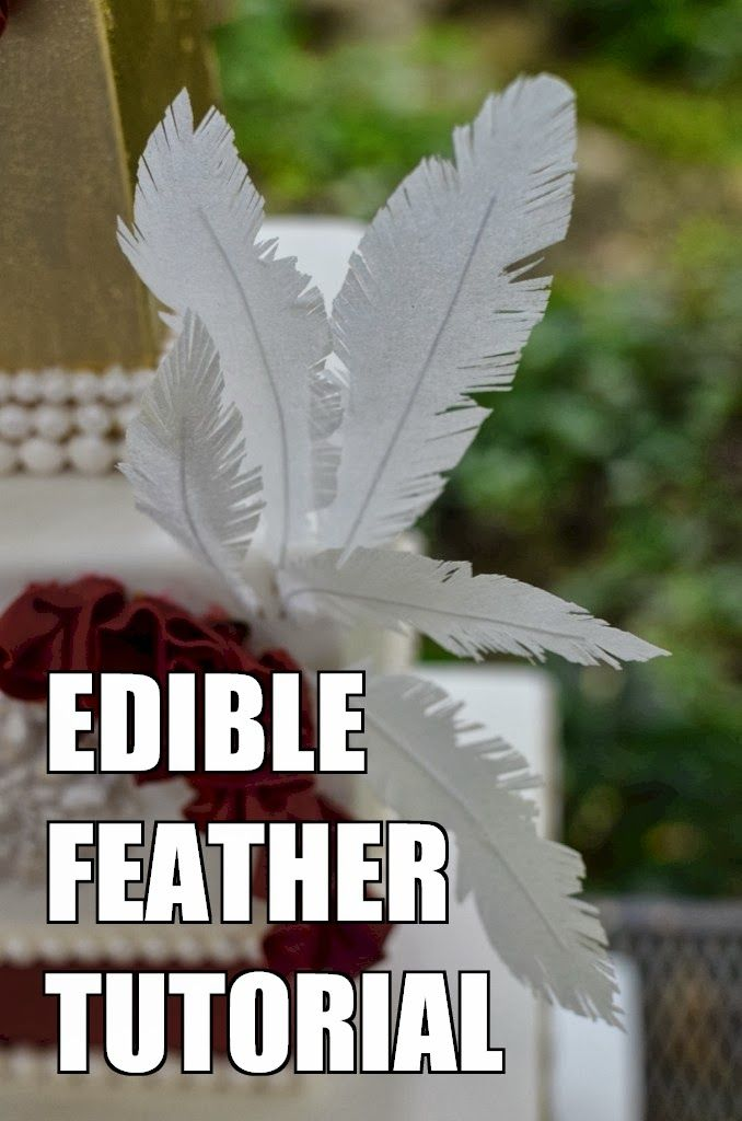 Cup a Dee Cakes Blog: Edible Feather Tutorial