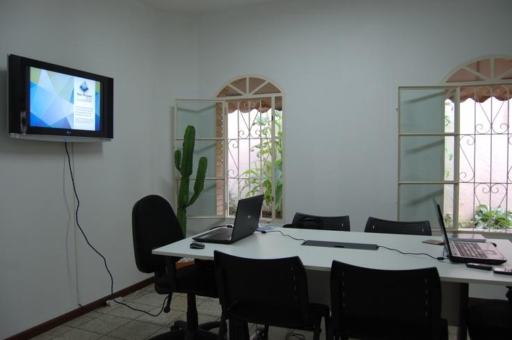 Vista da parede oposta à arte grafiti na Sala de reunião. Desta lado, a arte vem da natureza, em forma de Cactus! =)