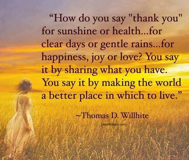 Thankful For Quotes: 51 Best Images About Thankyou On Pinterest