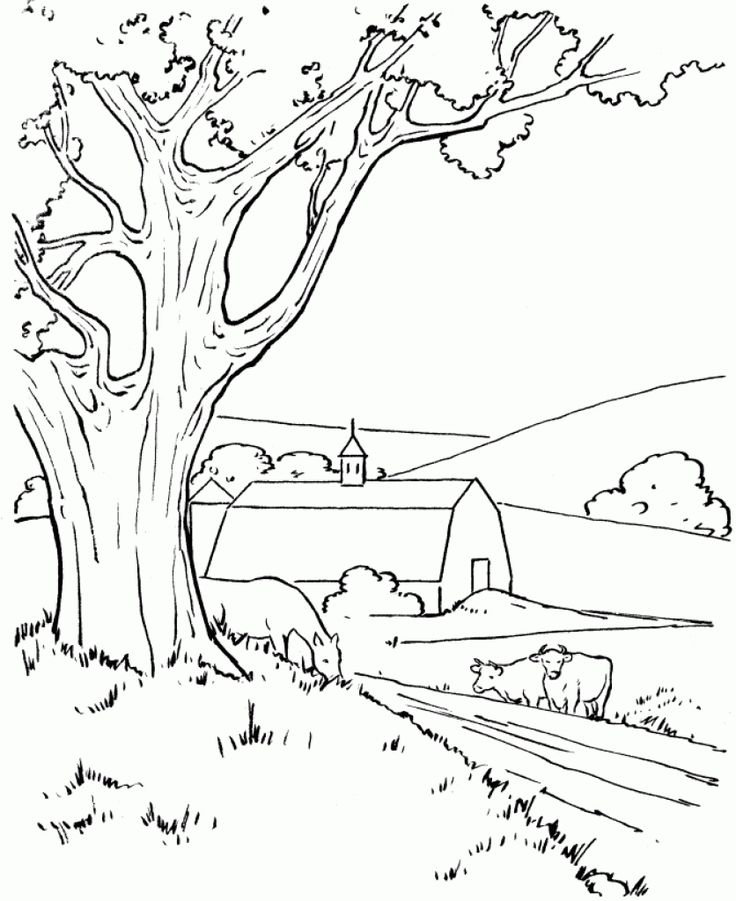 35 Best Colouring Pages Images Coloring Farm For Adults Mountain Scene