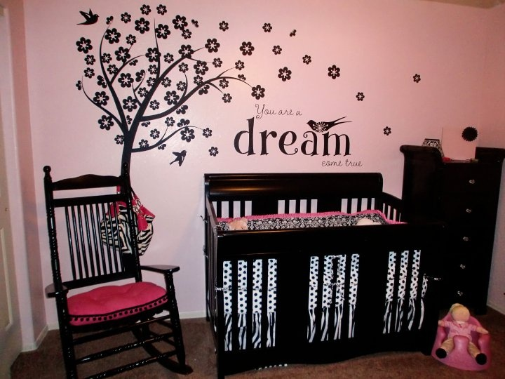 Baby Girl Room Ideas Pink And Black 61 best baby nursery ideas images on pinterest | nursery ideas