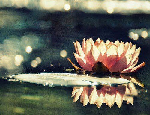 When Emotion Overtakes You - Ram Dass
