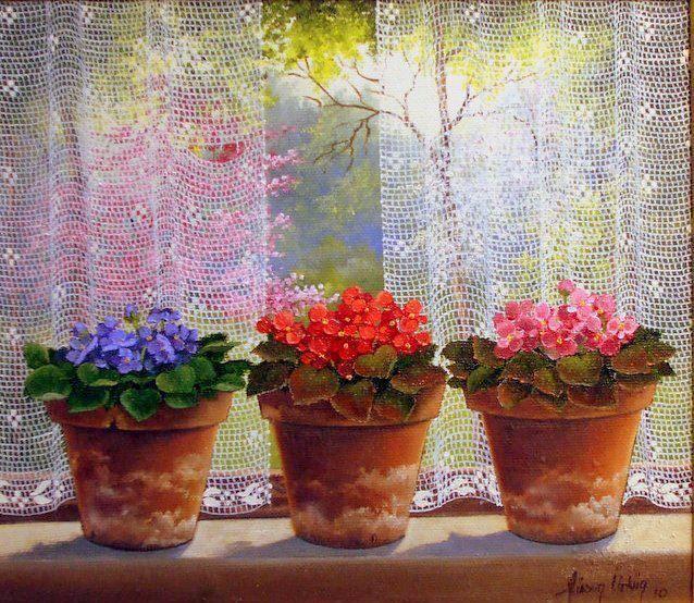 violetas na janela