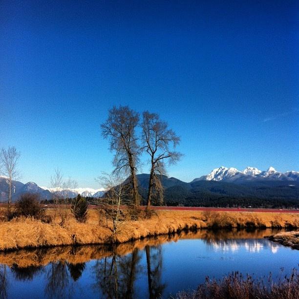 This was taken by a young friend of mine in Maple Ridge B.C. on her iphone.