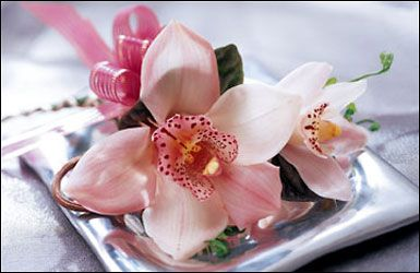 orchid corsage for moms, minus ribbon bow