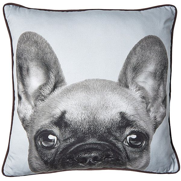 Frenchy Bulldog Cushion 45cm Target Australia ($11) ❤ liked on Polyvore featuring home, home decor, throw pillows, gray throw pillows, grey home decor, gray accent pillows, gray home decor and target toss pillows