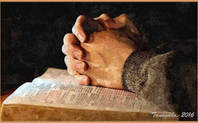 Le più note preghiere della tradizione cristianaPreghiere In questa pagina trovate le preghiere comuni e più conosciute della tradizione cristiana: dal Padre Nostro all'Atto di dolore passando per l'Ave o Maria, il Credo, la Salve Regina, il Gloria al Padre #padrenostro #preghierecomuni