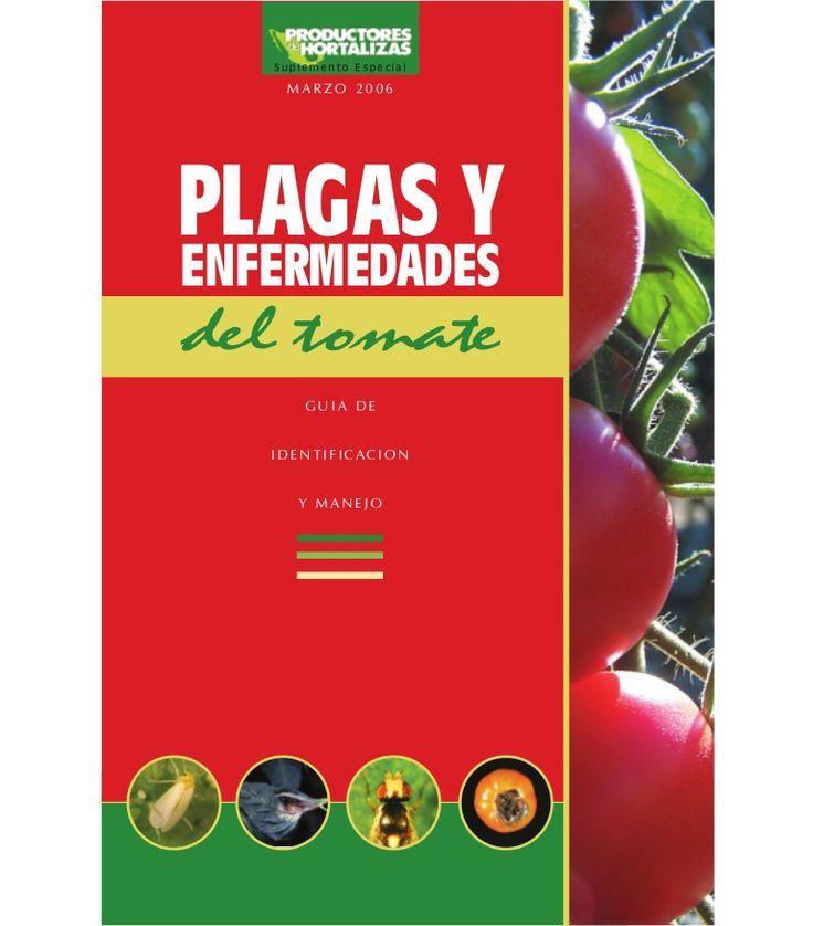 M A R Z O 2 0 0 6 S u p l e m e n t o E s p e c i a l PLAGAS Y ENFERMEDADES G U I A D E I D E N T I F I CAC I O N Y M A N E J O del tomate