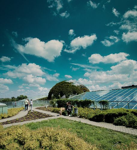 The University of Warsaw Library Rooftop Gardens