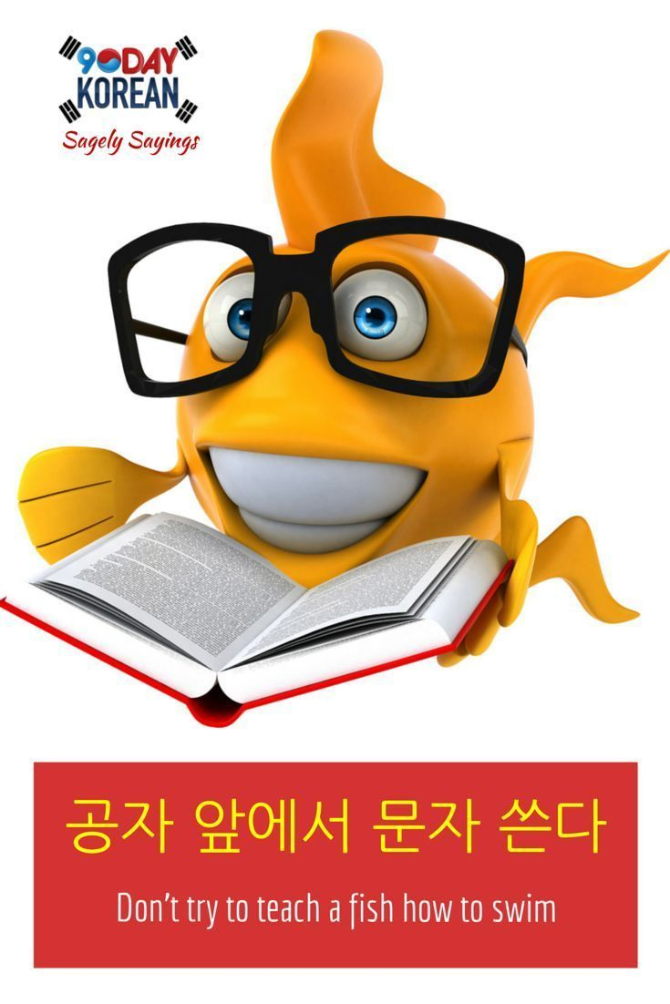 Check out today's #Korean Sagely Saying!  This is a Korean proverb that means Don't try to teach a fish how to swim. Cant read Korean yet? Free Korean reading guide (link in bio).  Repin if you like this proverb!