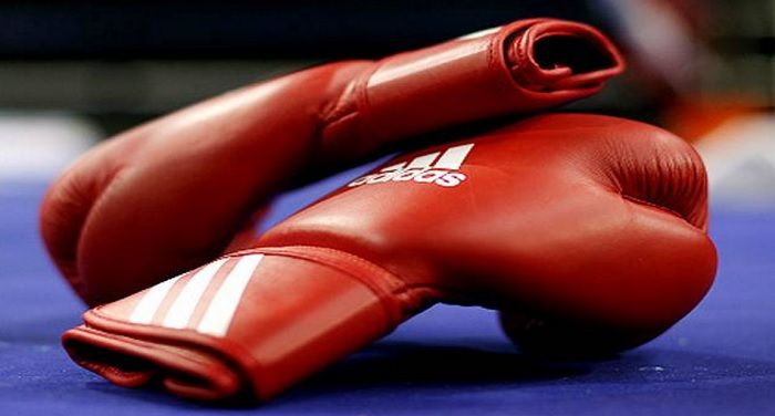 Bharat Khabar offers sports news in Hindi, Indian boxers performed well at Professional boxing competition.