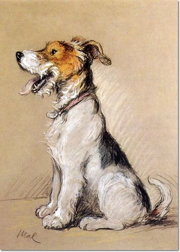Wire Haired Fox Terrier  #dog #dogart   http://www.petrashop.com/