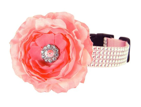 A sparkling pink rhinestone collar and flower from Pawsh Accessories!