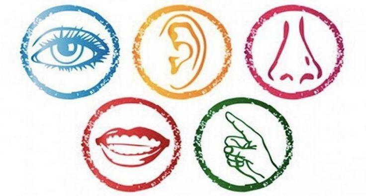 Use The 5 Senses To Shape Your Online Reputation | Amanda Ryan | LinkedIn