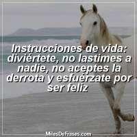 Instrucciones de vida: diviértete, no lastimes a nadie, no aceptes la derrota y esfuérzate por ser feliz