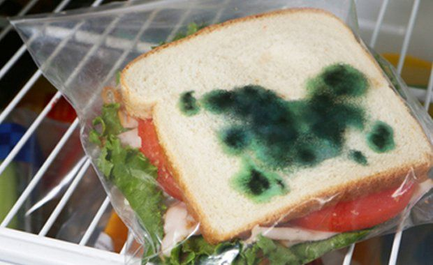 Amazing Inventions Anti-Theft Sandwich Bag  | www.piclectica.com #piclectica