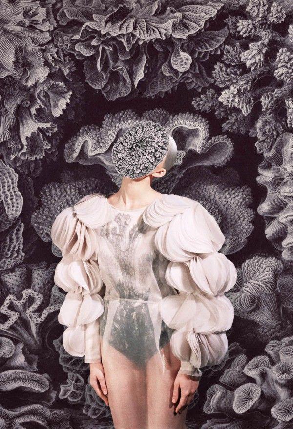 masha reva: Masha Reva, Art Blog, Fashion Design, Fashion Blog, Wall Flowers, Fashion Editorial, Design Blog, Merg 2012, Mashareva