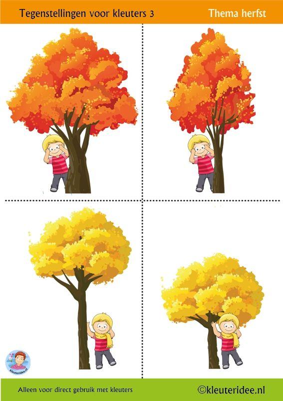 Tegenstellingen voor kleuters 3, thema herfst,  kleuteridee, Preschool opposites 3,  free printable.