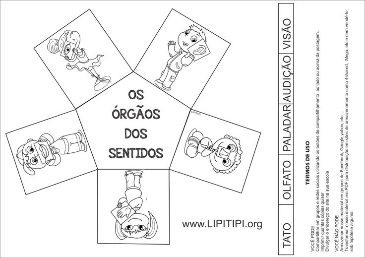 Lipitipi- Atividades e Projetos Fundamental I: Atividade Órgãos dos Sentidos para Pasta de Estudos