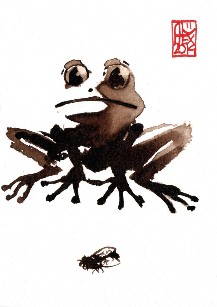 Grenouille / Frog : Aquarelle et brou de noix sur papier 250gr / Watercolor and walnut stain on paper 250gr 10.5 x 15 cm / 4.13x 5.9 in