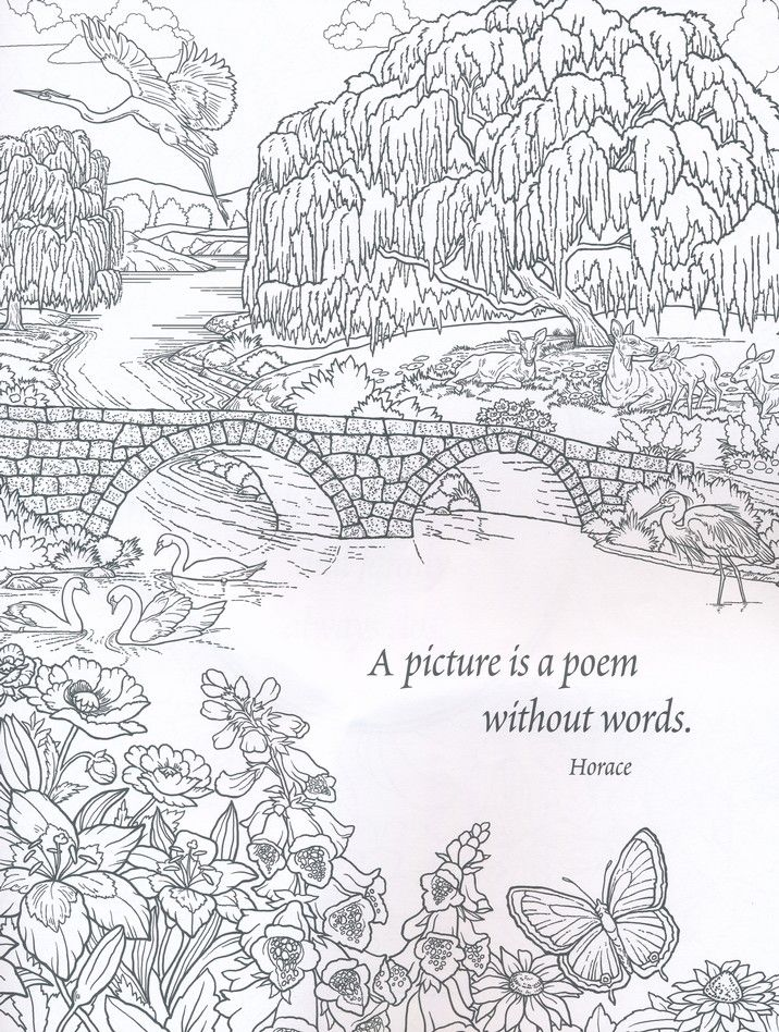 Nature Coloring Book For Adults If Youre In The Market