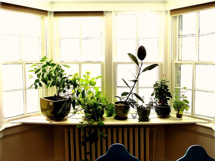 i need some mother earth in my sill
