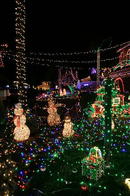 Some of San Diego's Best Christmas Light Displays!