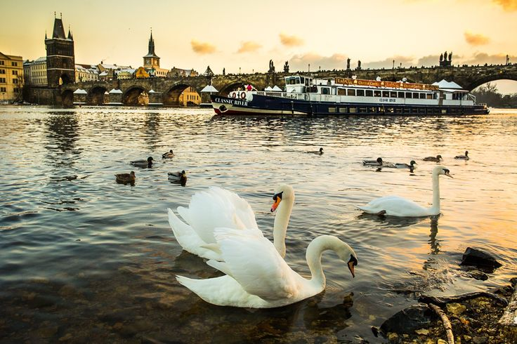 Romantic mood in Prague by Silviu Pal on 500px