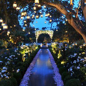 Fantasy Land Wedding