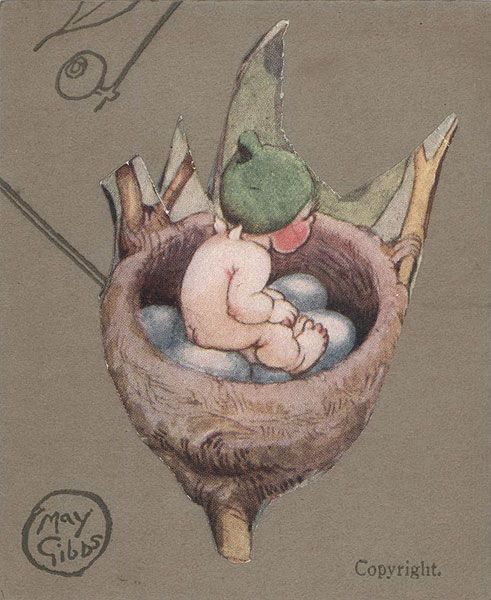Gumnut Baby In Bird's Nest. Another of May Gibbs' gorgeous pictures of Australian 'pixie' people.