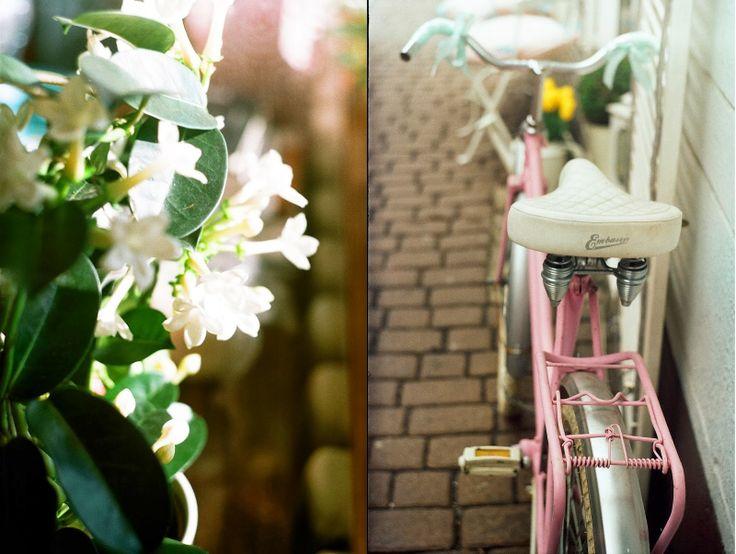 papierwiwelna.blogspot.com || waiting for spring...