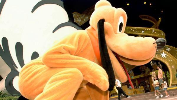 Esta es la emocionante reacción de un perro de servicio al conocer al personaje de 'Pluto' en Disney World   NTN24