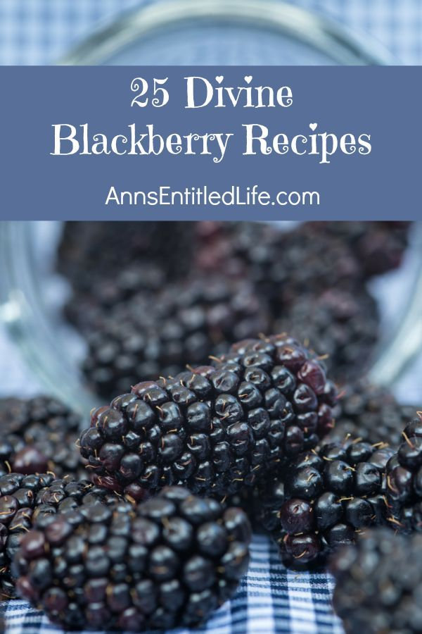 25 Divine Blackberry Recipes; Breakfast, Lunch or Dinner, Sweet or Savory foods, the blackberry the perfect fruit to cook and bake with! Versatile, sweet and delicious, these 25 Divine Blackberry Recipes will make the most of your luscious fresh blackberry fruit.