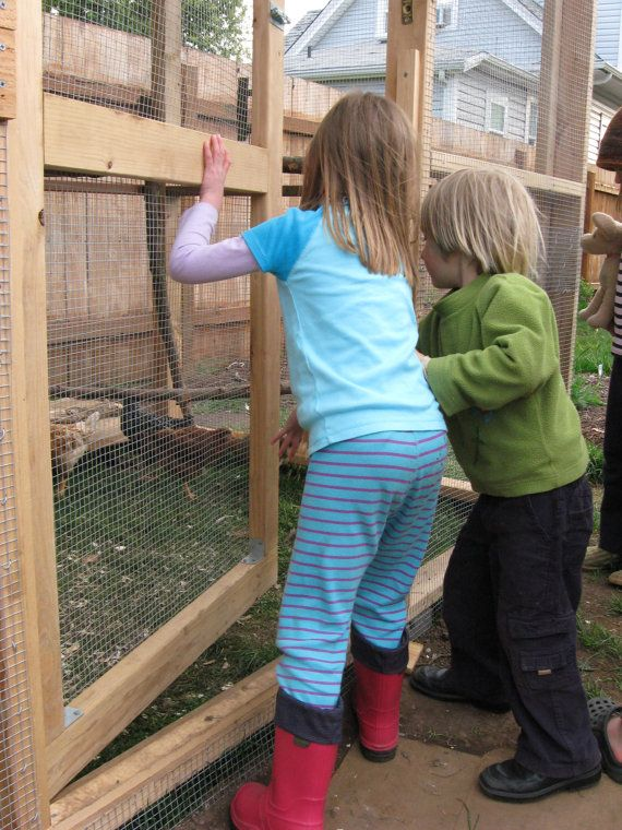 The Garden Coop Walk-In Chicken Coop Plan eBook by TheGardenCoop