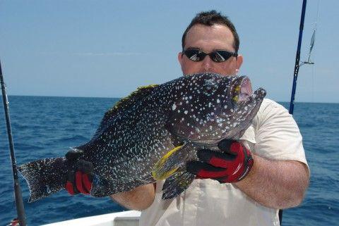 Pêche en exotique. Magnifique poisson pêché avec un moulinet Stella de chez Shimano.