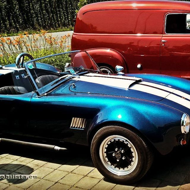 Replica or Not, what you think? AC Cobra