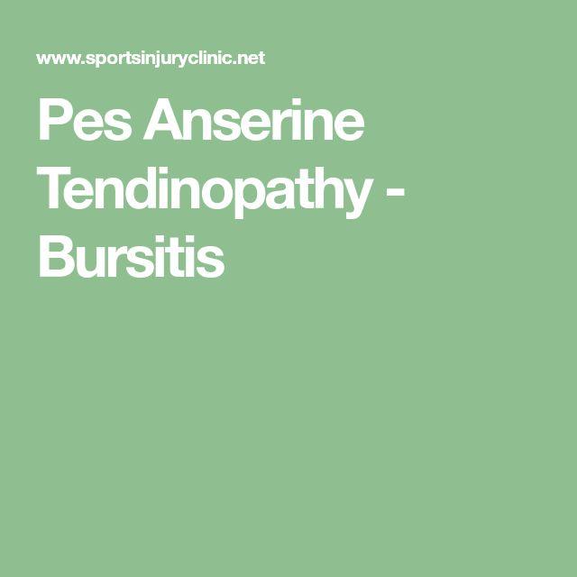 20 Best Pes Anserine Bursitis Images On Pinterest Knee