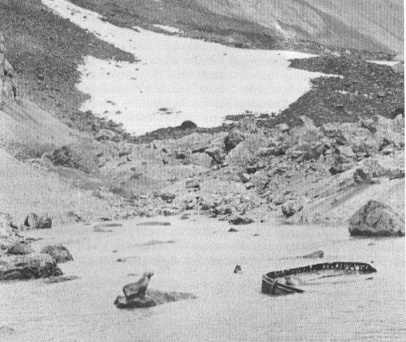 Bouvet island mystery - 1964