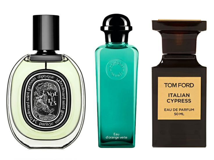 Best Men's Cologne | Everywhere - DailyCandy