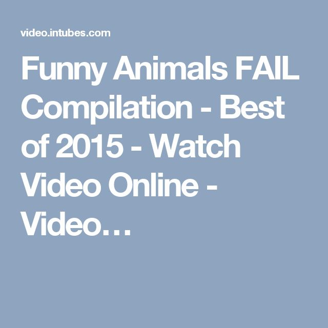 Funny Animals FAIL Compilation - Best of 2015 - Watch Video Online - Video…