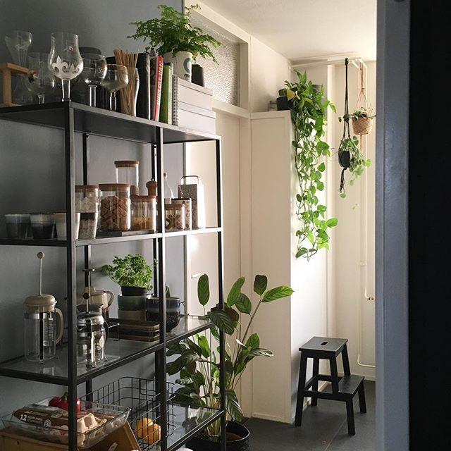 De VITTSJÖ stellingkast bij @lin_terior | #IKEABijMijThuis IKEA IKEAnl IKEAnederland inspiratie wooninspiratie woonkamer interieur kamer industrieel grijs zwart planten groen robuust