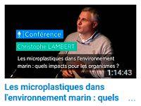 Les microplastiques dans l'environnement marin : quels impacts pour les organismes ? par Christophe LAMBERT
